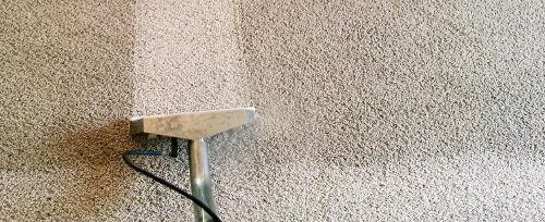 bef-aft-carpet