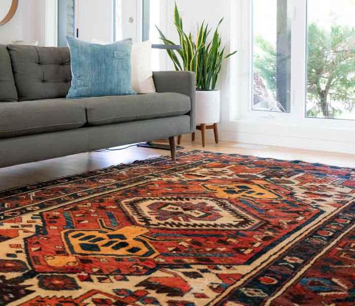 Carpet Shampooer