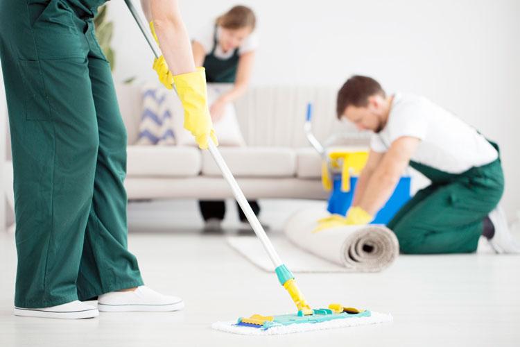 Carpet Cleaning Expert Adelaide