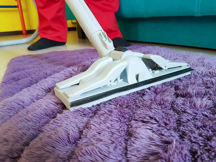 Best professional carpet cleaners